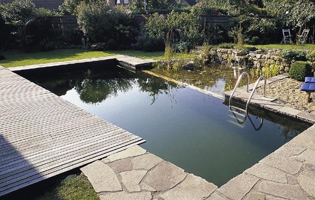Zwemvijver opbouw soorten prijs advies for Zwemspa prijzen